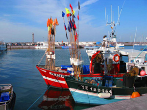 Fishing boats at Port Joinville, Ile d'Yeu, Vendee