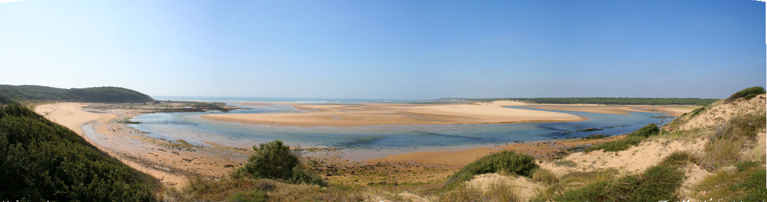 The Estuary of the river Payre